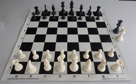 This is the product image for Weighted Chess Pieces (White). Detail: PLASTIC PIECES. Product ID: PCS4H.